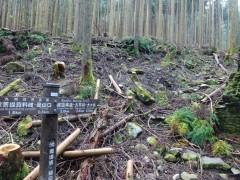 登山道と従来の標識