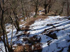 山頂付近に残る雪