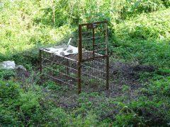 皿倉山登山道近くに設置されていた檻